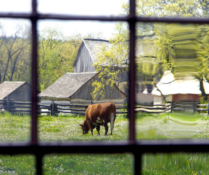 The 1875 Schottler farm in the German area as seen through a window in the Schulz farmhouse.