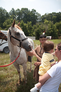 Carol's Horse Kilo