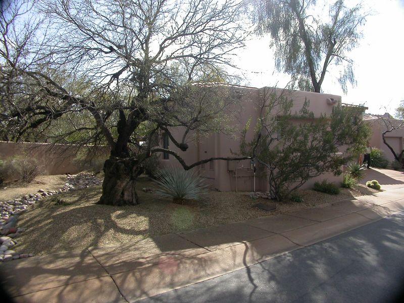 Scottsdale 042
