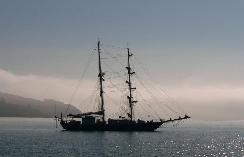 Sausalito Morning-2