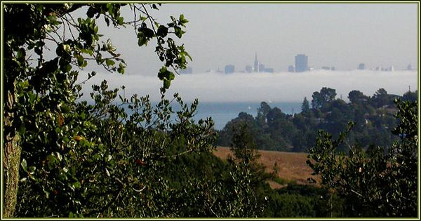 Fri 10-20-05 On the Road - SF from Christmas Tree Hill