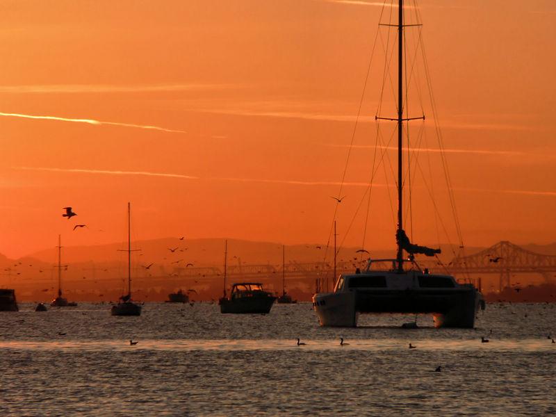 Tue 02-07-06  Sunrise in Sausalito - Bay Bridge and Catamaran