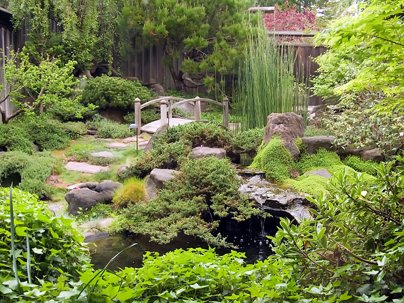 04-06-07 Osmosis Garden