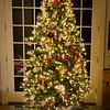 12-12-08 Xmas Tree 2