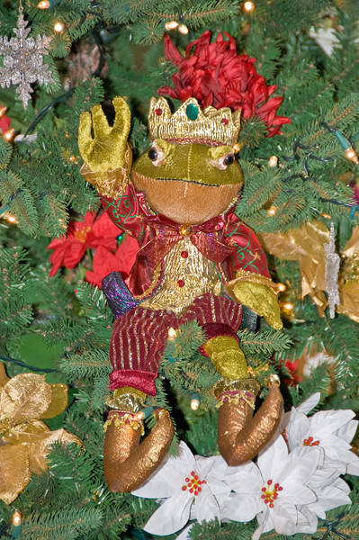 12-03-08 Frog Prince