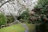 02-28-08 Backyard Spring