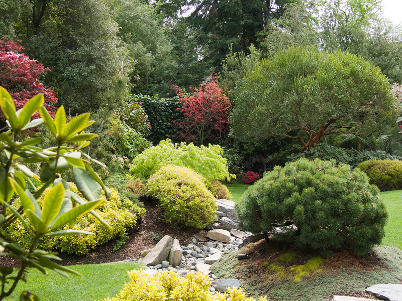 03-29-08 552 Backyard