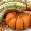 10-03-08 Pumpkins