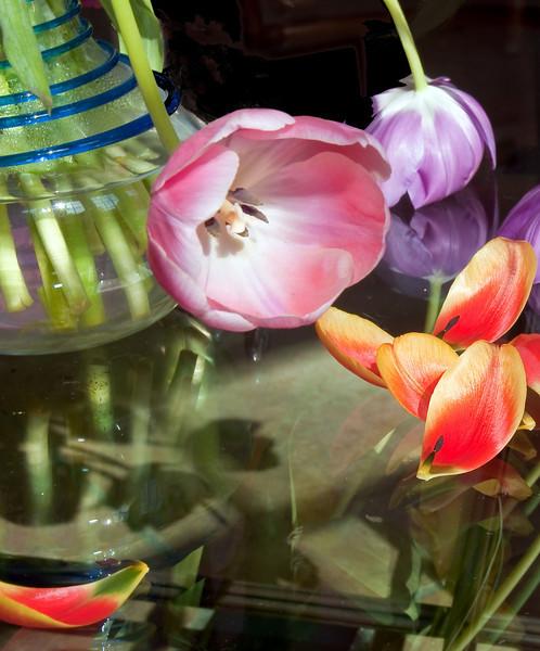 04-16-09 Tulips in Vase