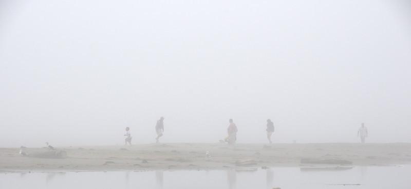Pt  Reyes Drakes Beach Foggy Day-33