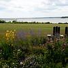 08-07-10 Blithewold -  lawn & bay