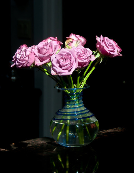 Came in from a walk this morning and these pink roses were just LIT UP on the counter. Beautiful.