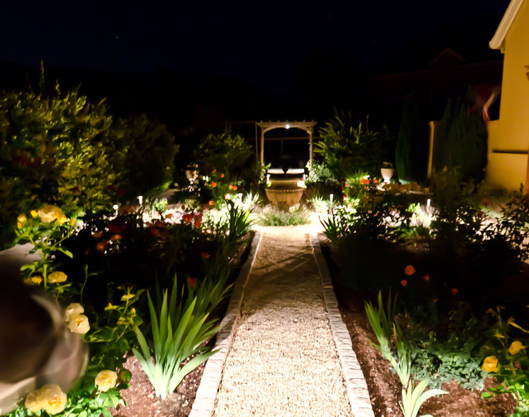 """7-3-2011 - Cher's garden at night. Lucy's head just visible in the lower left corner. Another one I """"painted""""."""