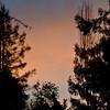 01-04-11 Sunrise-1