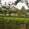 8-30-11 WIne Country Inn in St. Helena