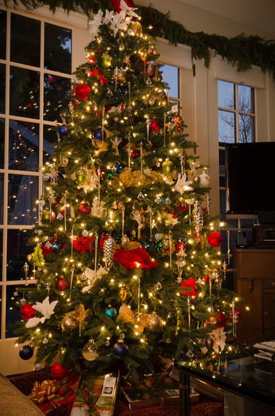 2011 Xmas tree