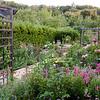 9-17-11 Cher's garden