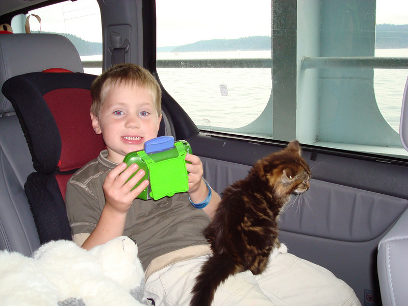 We got a kitten this summer at the pound in the islands, and she helped keep the ferry ride entertaining.