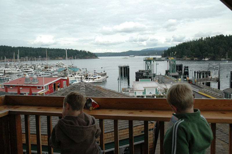 """At the \""""Friday Harbor Crabhouse\"""" there are a bunch of bees, and the food isn\'t that good, but the atmosphere is wonderful."""