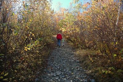 Petersburg Pass Hike