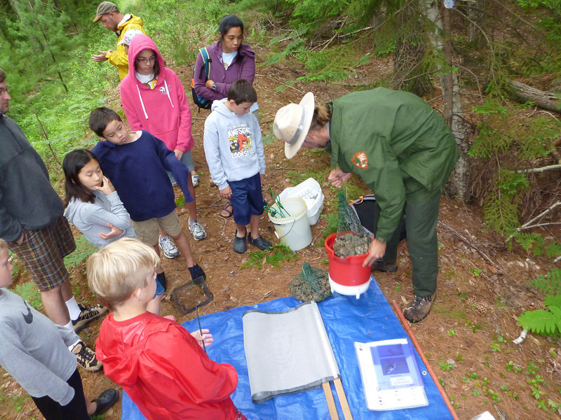 """Ranger Mike and the """"stream team"""" finding invertebrates in the stream"""