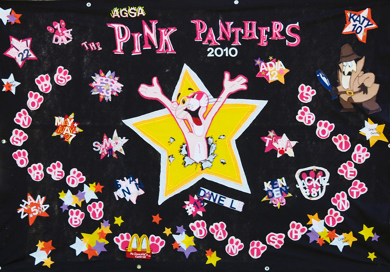 Pink Panthers 2010 Banner