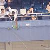 The ole' fishing net gets him a baseball