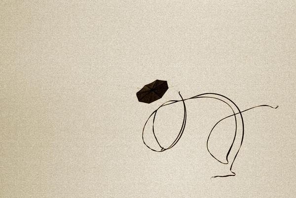 Spiraling Kite<br /> (Sepia tone added)