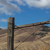 Cattle Fence and Blue Skies