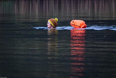 Evening Swim - Grasmere