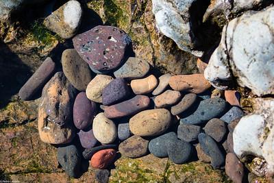 Rock Pool Pebbles