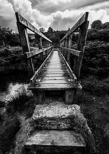Pete_Bridge