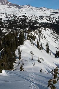 Ridge Walk on the Tatoosh
