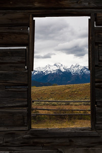Log Cabin View