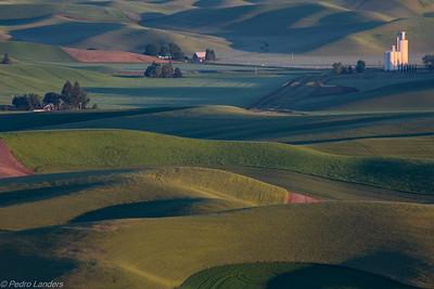Grain Silo at Dawn