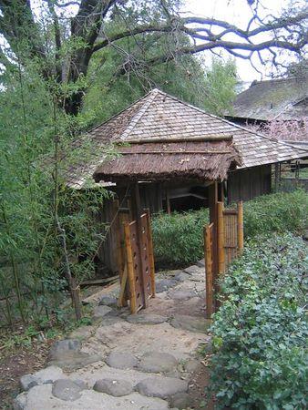 Hakone Gardens in February