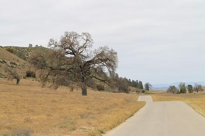 Shell Creek Road April 2011