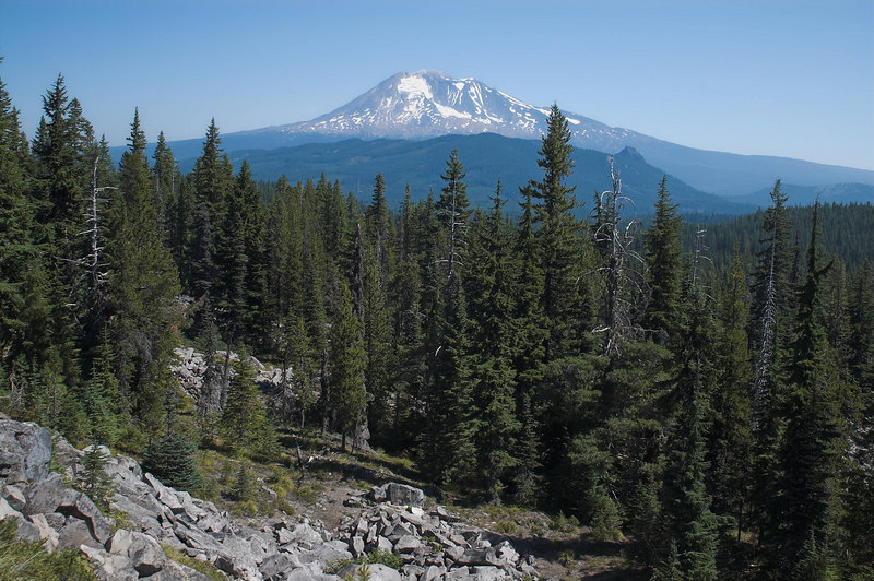 Mount Adams from a lookout on highway 24