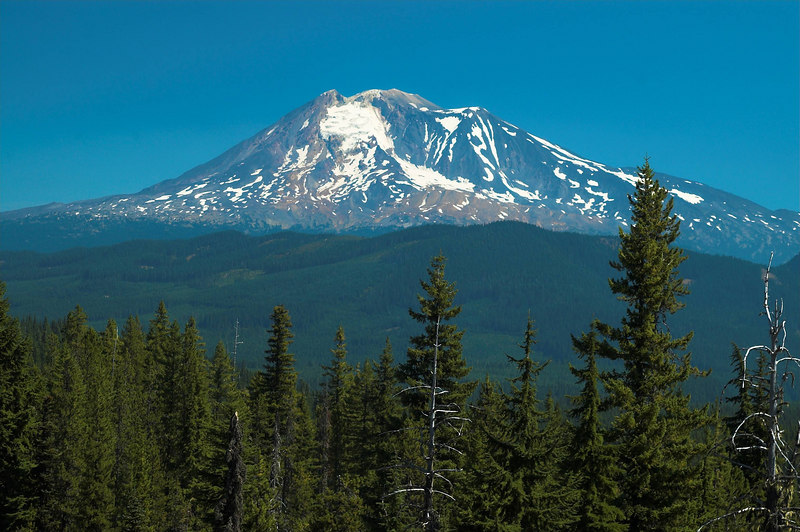 The best of the Mount Adams photos.