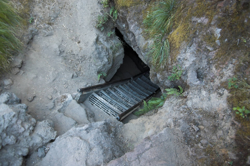 The ladder down into the Ape Caves at the upper entrance