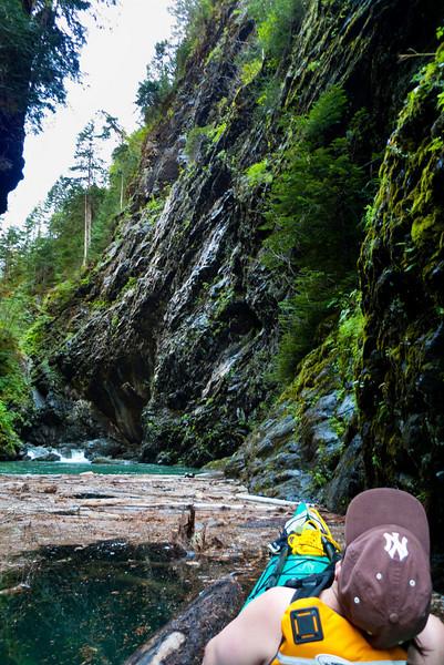 Log jam on Devil's Creek