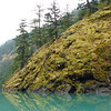 Mossy rocks over Lake Diablo