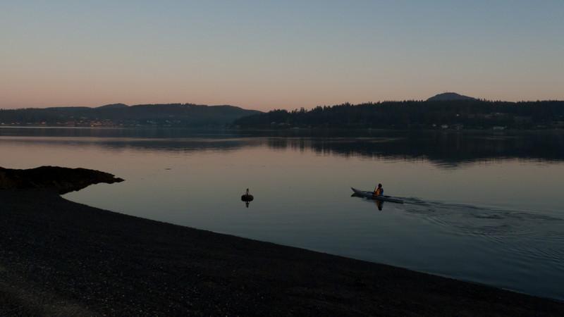 morning paddler