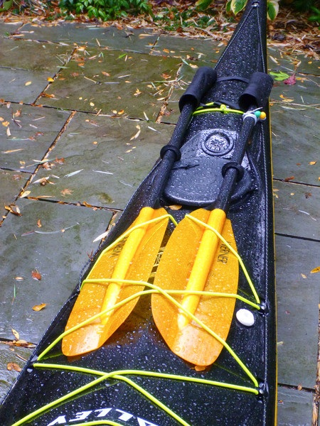 Spare paddle holder.  Just two fabric tubes to keep the paddles from scratching up my boat.