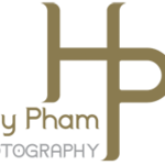 HP logo gold