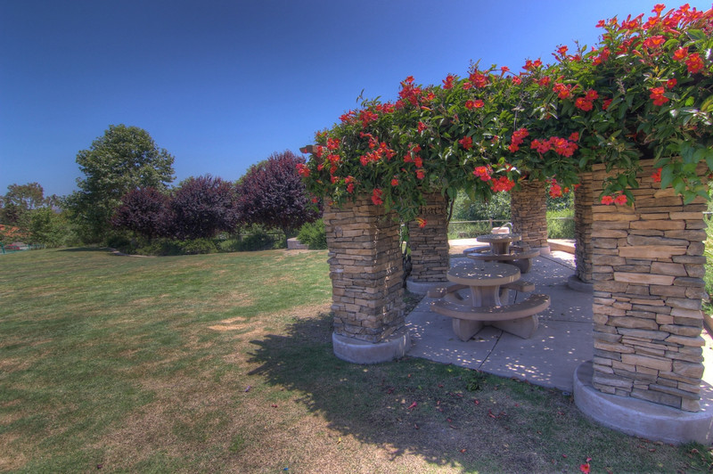 Sun Vista Park trumpet flower pergola in Olivenhain a community in Encinitas Ca