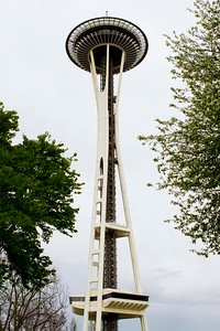 Reaching the Space Needle