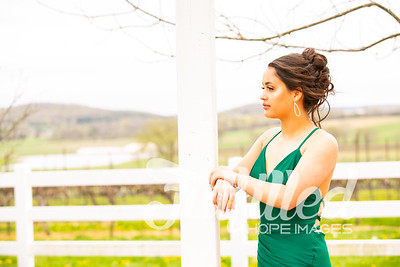 Olivia Leftridge Senior Prom Session 2019 (10)