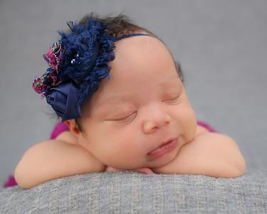Olivia's Newborn Session