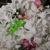 Olmos Wedding day-14